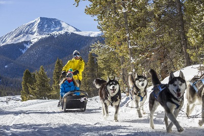 Winter activities in Breckenridge dog sled rides