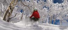 USA ski holidays in Steamboat ski resort Colorado