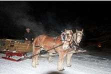 Sleigh ride to Pine Creek cookhouse Aspen Colorado USA